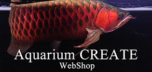 アジアアロワナ販売AquariumCREATEのショッピングサイト